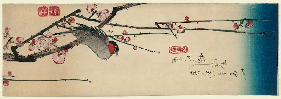 Hiroshige uccello stampa