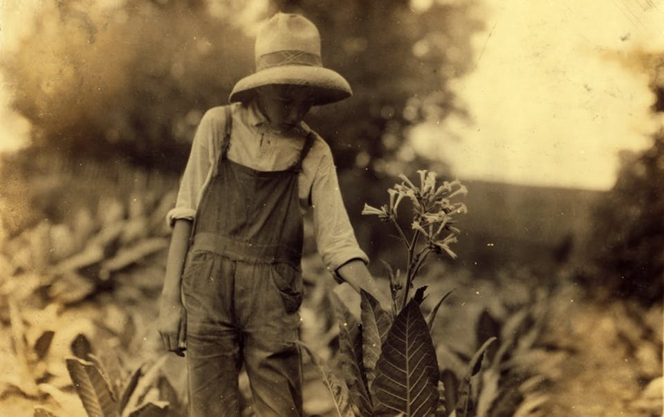 George Barbee, 13 anni, Kentucky, 1916. Via
