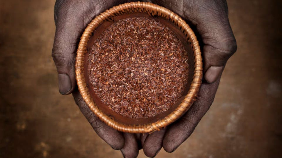 te rosso africano (rooibos)